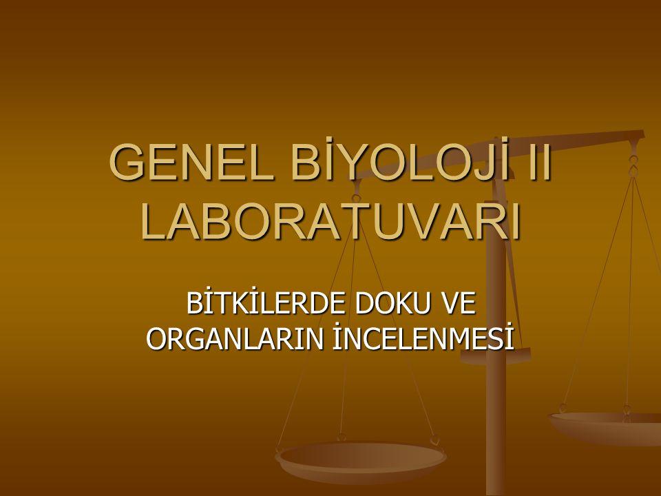 GENEL BİYOLOJİ II LABORATUVARI