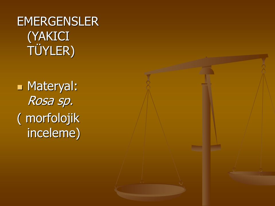 EMERGENSLER (YAKICI TÜYLER)