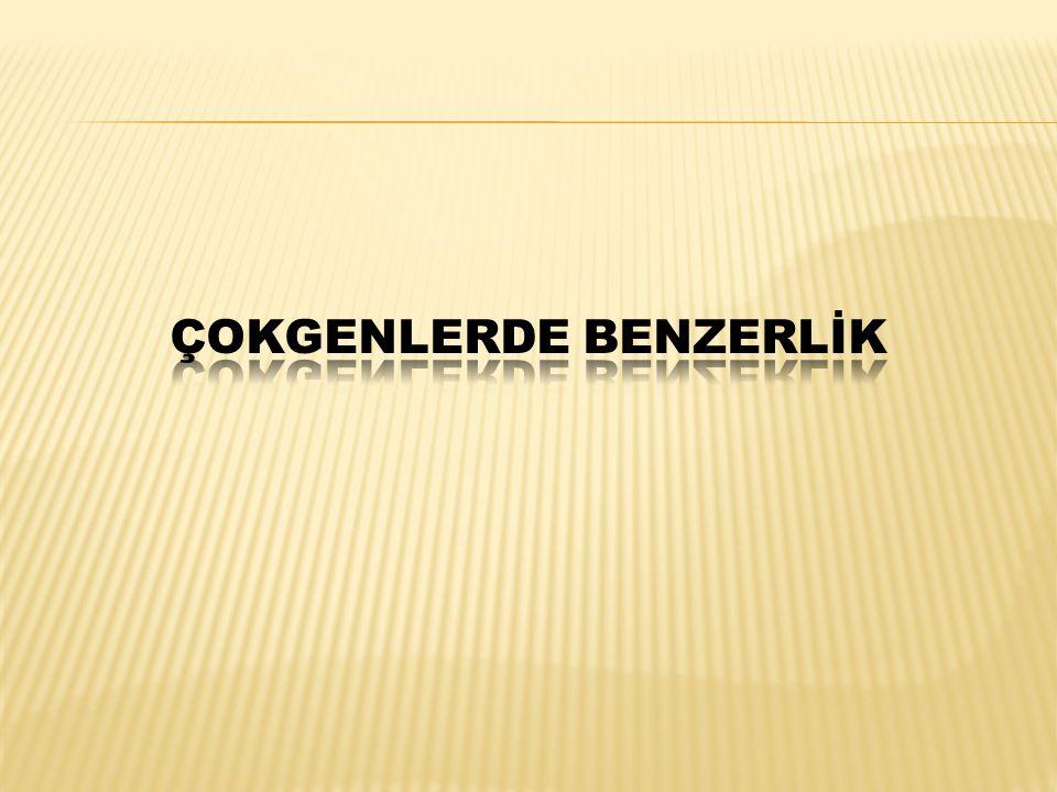 ÇOKGENLERDE BENZERLİK