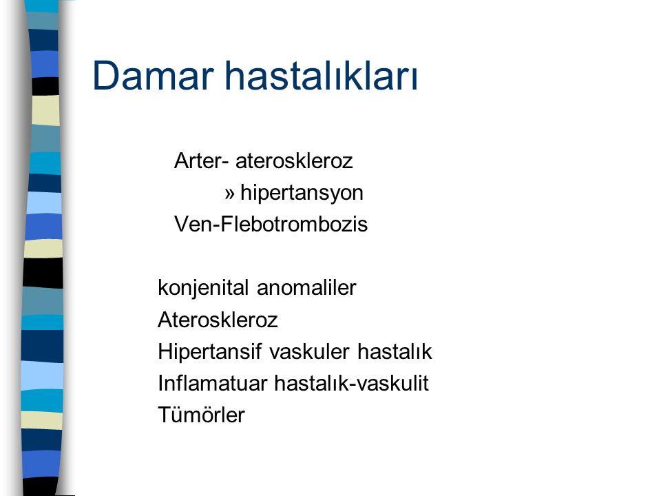 Damar hastalıkları Arter- ateroskleroz hipertansyon Ven-Flebotrombozis