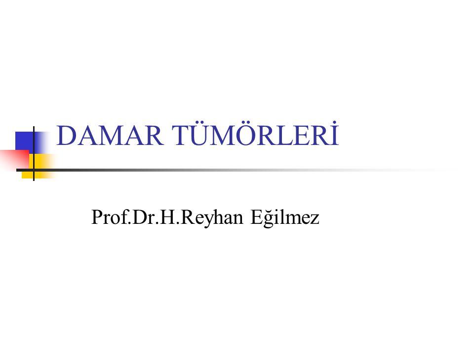 Prof.Dr.H.Reyhan Eğilmez