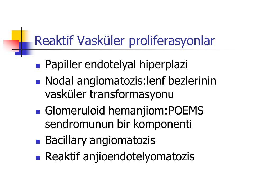Reaktif Vasküler proliferasyonlar