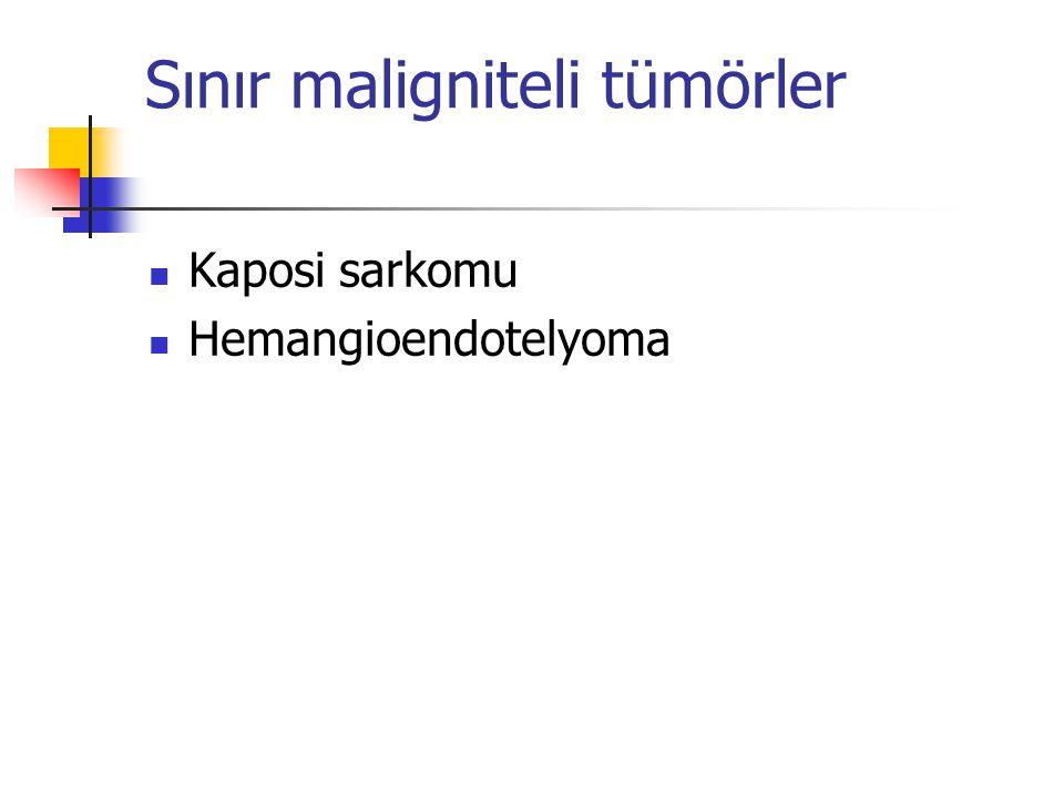 Sınır maligniteli tümörler