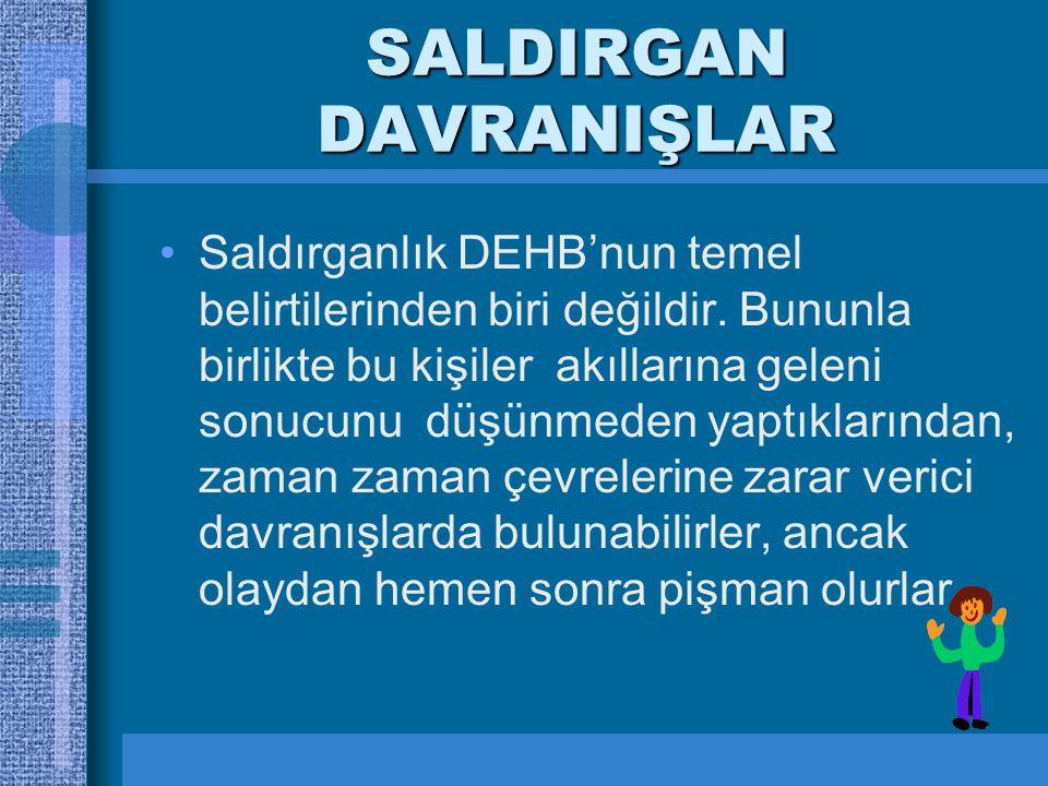 SALDIRGAN DAVRANIŞLAR