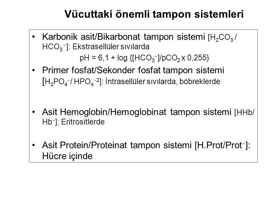Vücuttaki önemli tampon sistemleri