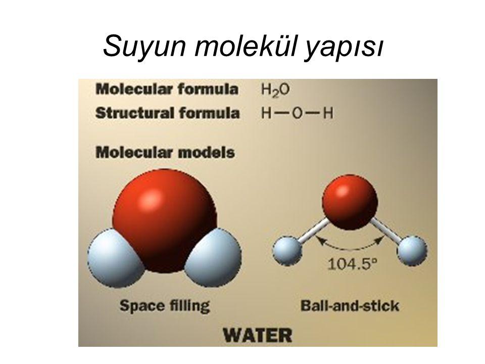 Suyun molekül yapısı