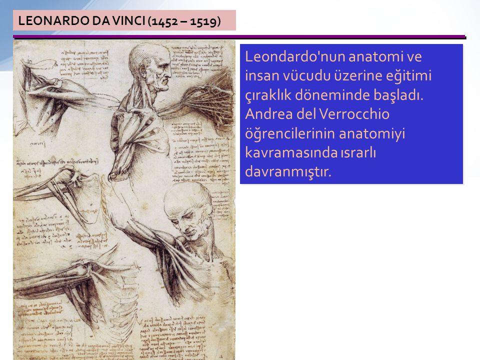 LEONARDO DA VINCI (1452 – 1519) Leondardo nun anatomi ve insan vücudu üzerine eğitimi çıraklık döneminde başladı.