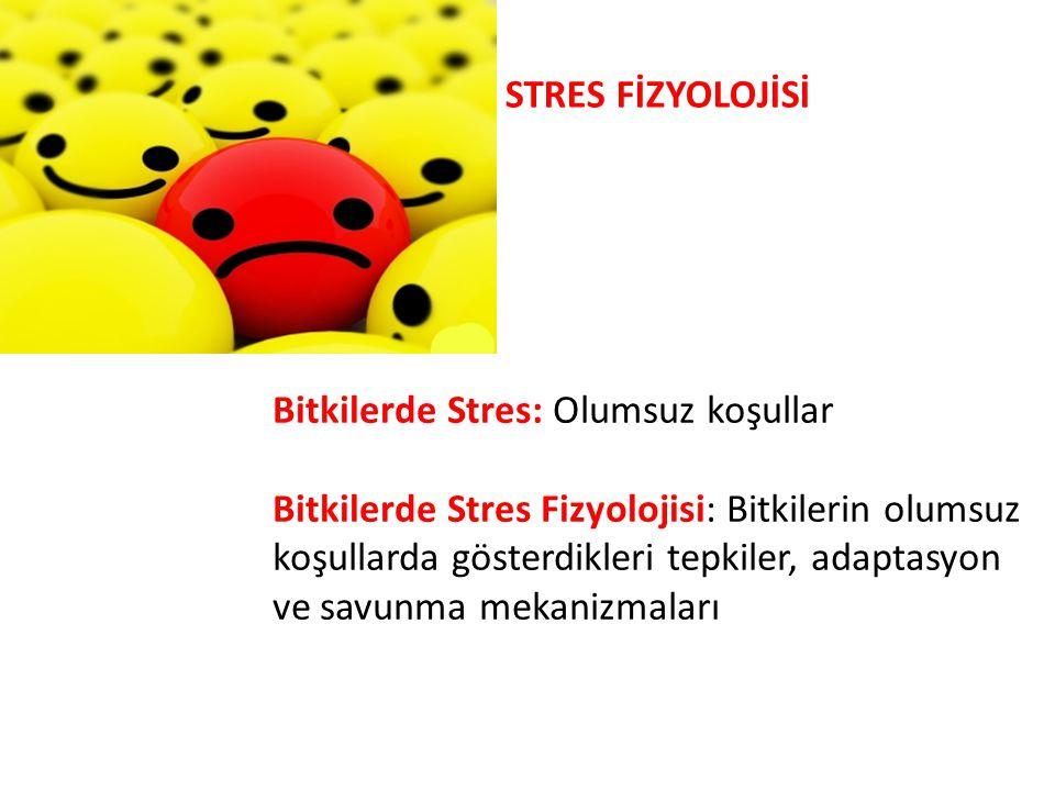 STRES FİZYOLOJİSİ Bitkilerde Stres: Olumsuz koşullar.