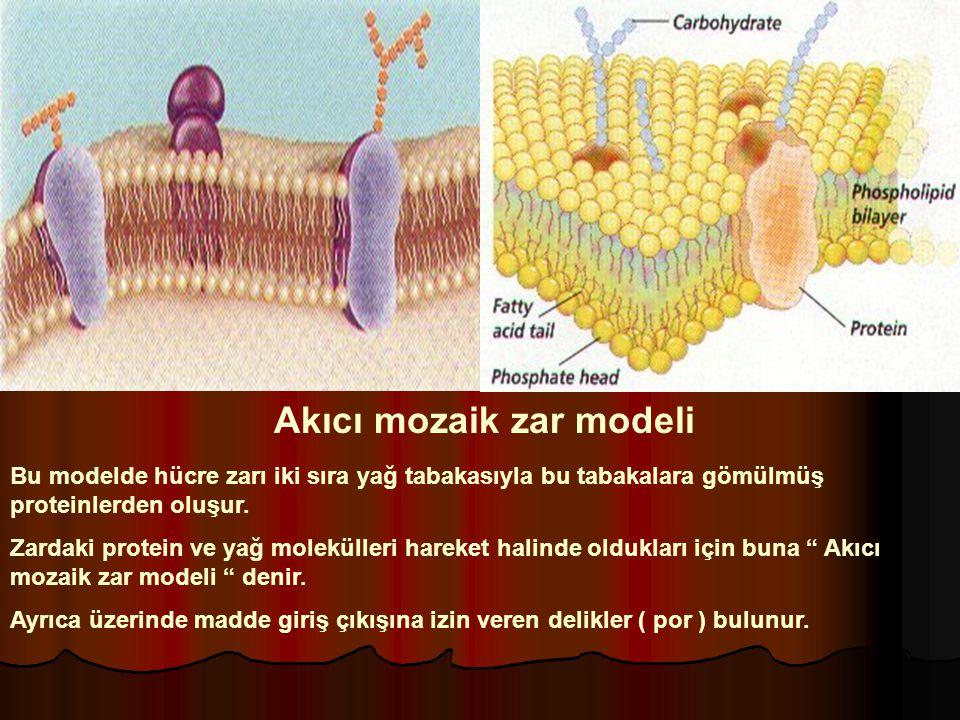 Akıcı mozaik zar modeli
