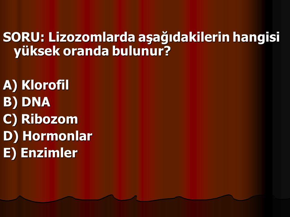 SORU: Lizozomlarda aşağıdakilerin hangisi yüksek oranda bulunur