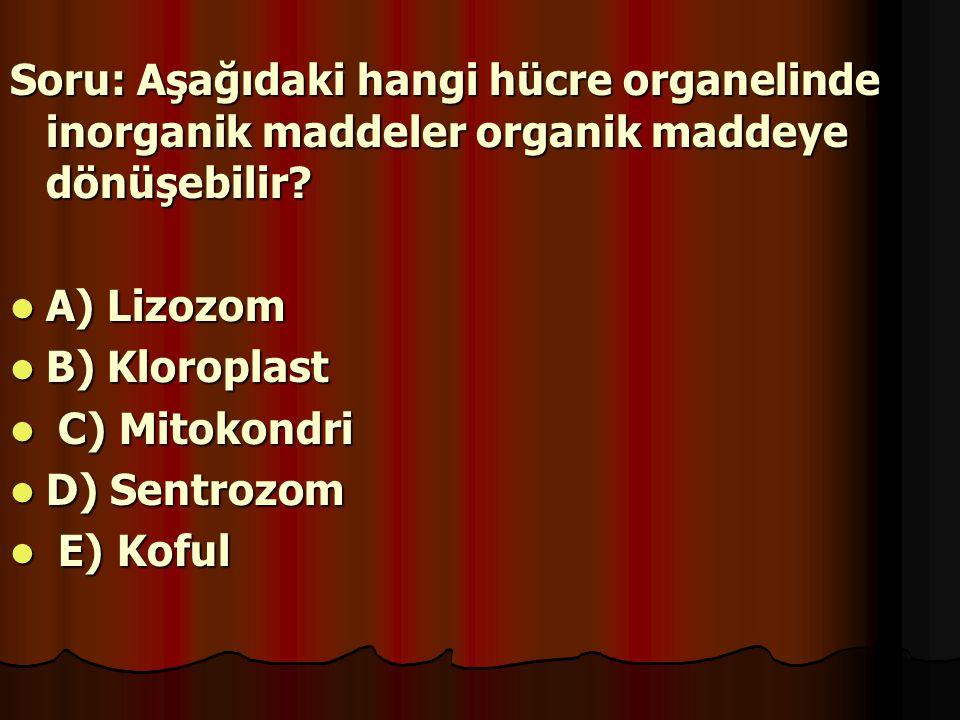 Soru: Aşağıdaki hangi hücre organelinde inorganik maddeler organik maddeye dönüşebilir