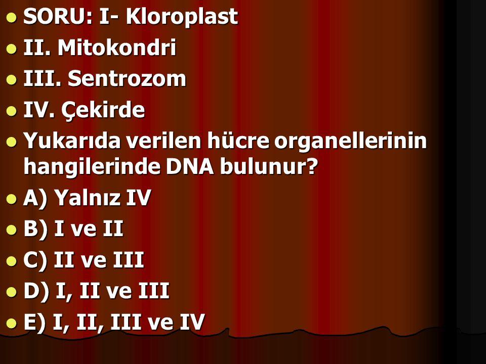 SORU: I- Kloroplast II. Mitokondri. III. Sentrozom. IV. Çekirde. Yukarıda verilen hücre organellerinin hangilerinde DNA bulunur