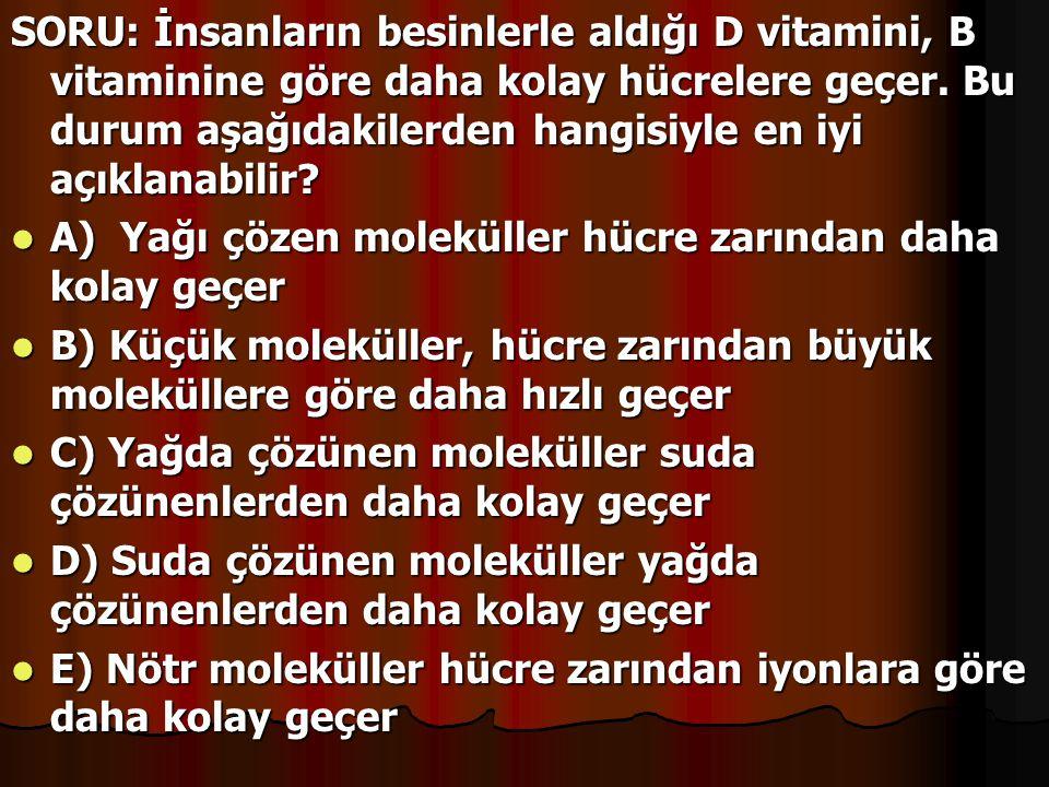 SORU: İnsanların besinlerle aldığı D vitamini, B vitaminine göre daha kolay hücrelere geçer. Bu durum aşağıdakilerden hangisiyle en iyi açıklanabilir