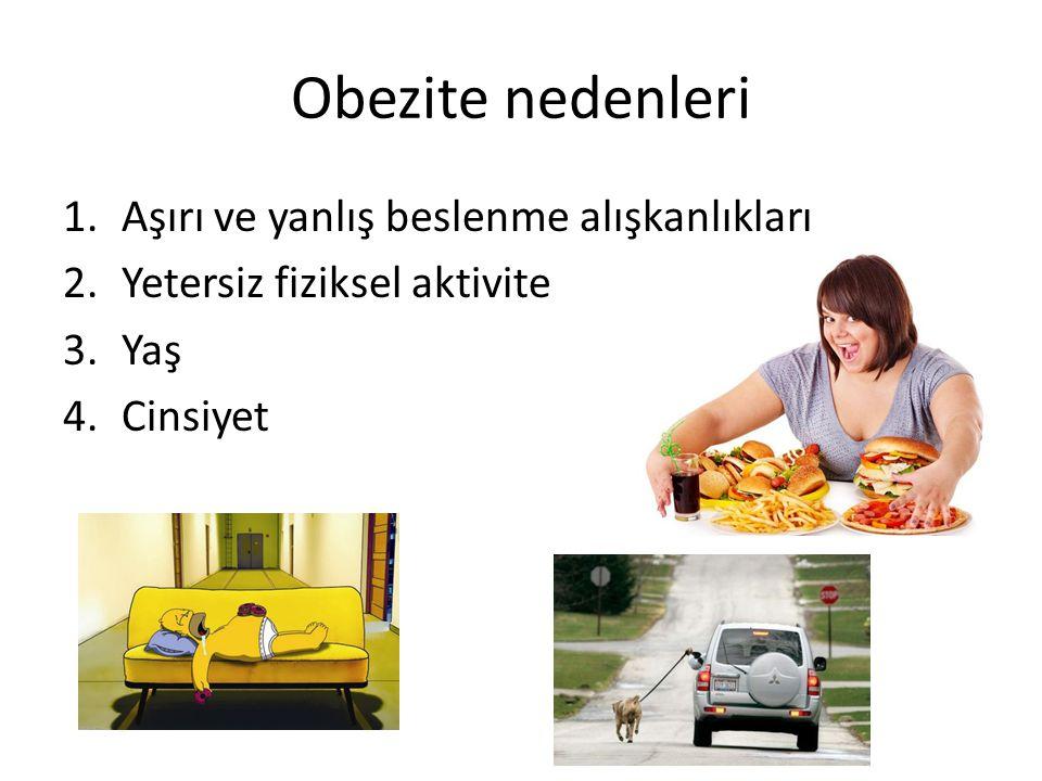 Obezite nedenleri Aşırı ve yanlış beslenme alışkanlıkları