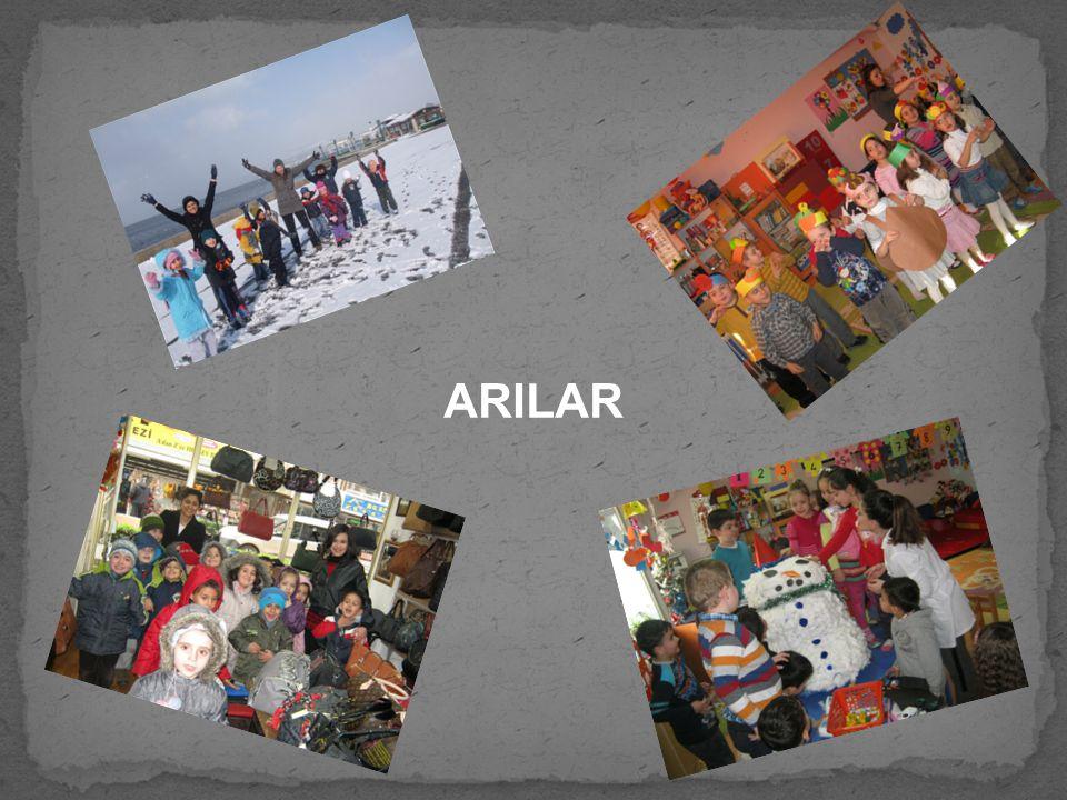 ARILAR