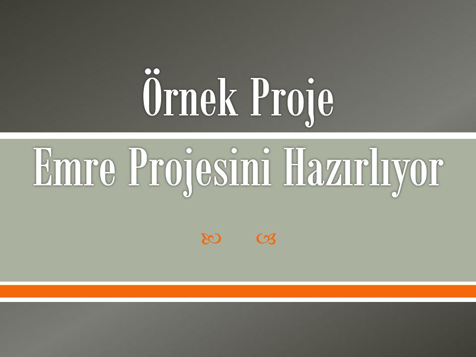 Örnek Proje Emre Projesini Hazırlıyor