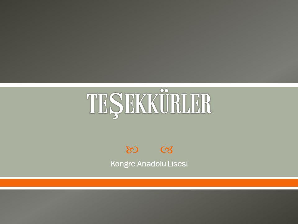 TEŞEKKÜRLER Kongre Anadolu Lisesi