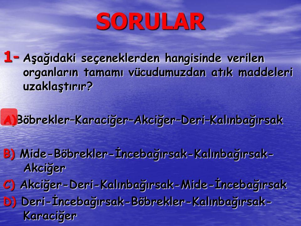 SORULAR 1- Aşağıdaki seçeneklerden hangisinde verilen organların tamamı vücudumuzdan atık maddeleri uzaklaştırır