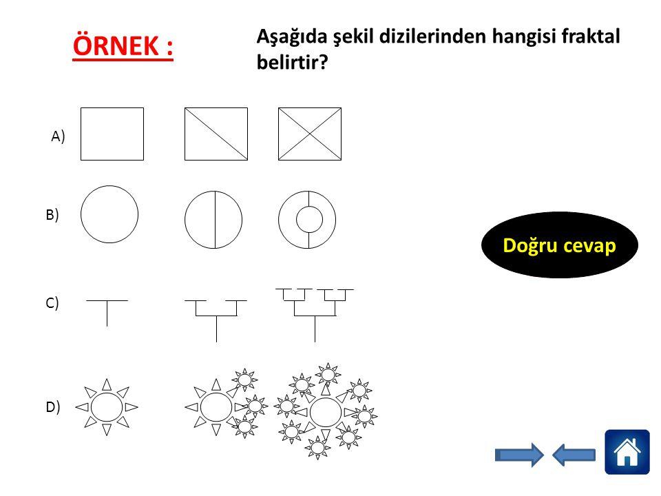 ÖRNEK : Aşağıda şekil dizilerinden hangisi fraktal belirtir