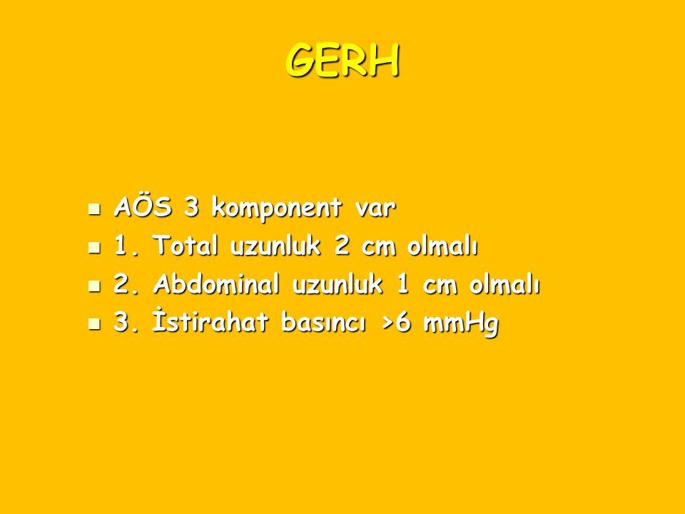 GERH AÖS 3 komponent var 1. Total uzunluk 2 cm olmalı