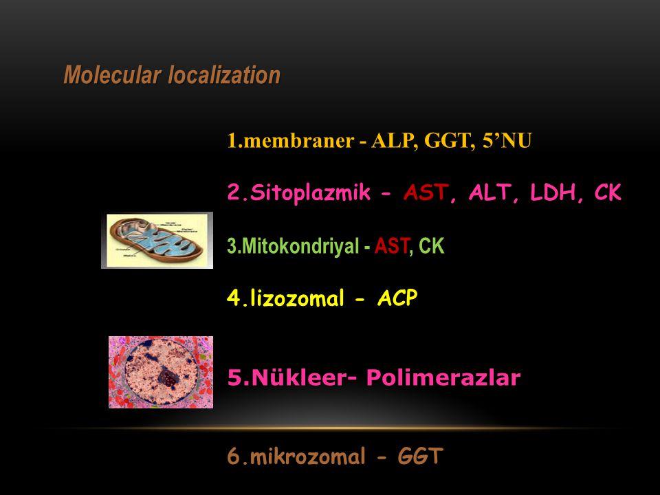 Molecular localization