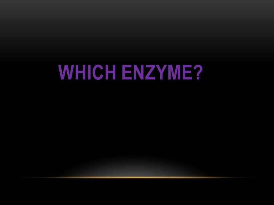 Which Enzyme