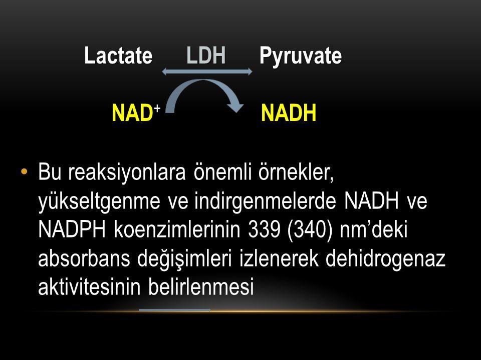 Lactate LDH Pyruvate NAD+ NADH.