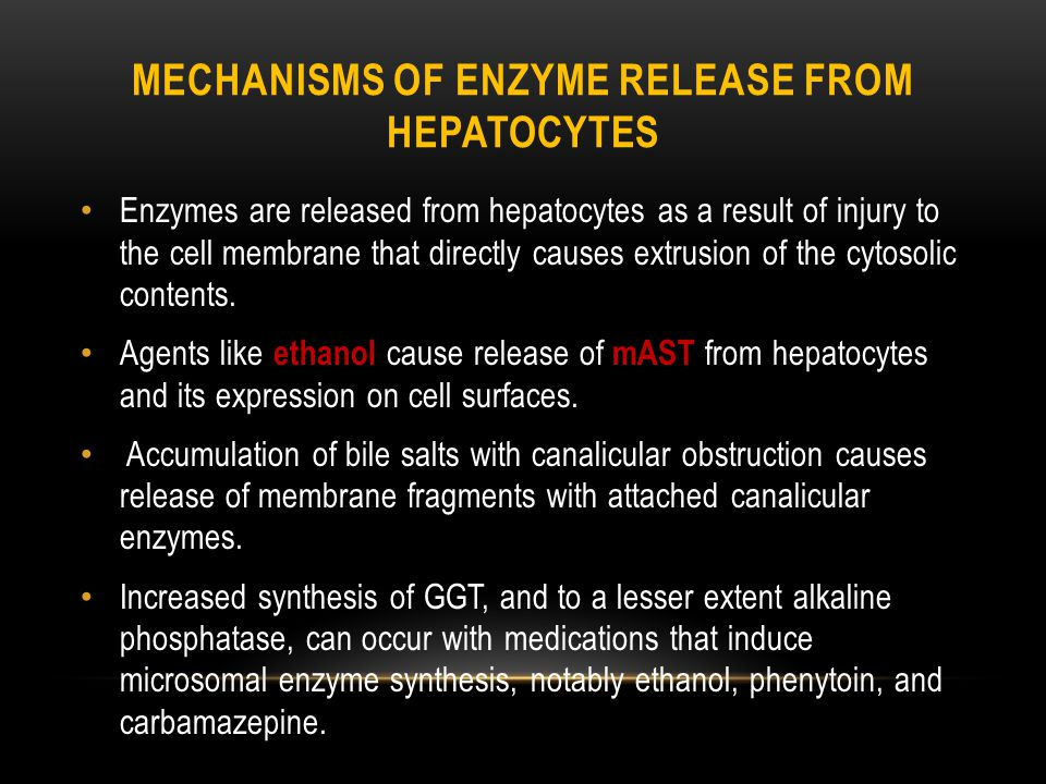 Mechanisms of Enzyme Release from hepatocytes