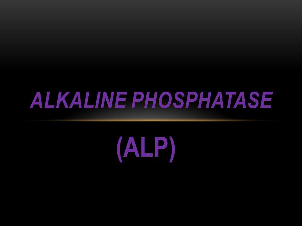 Alkaline Phosphatase (ALP)