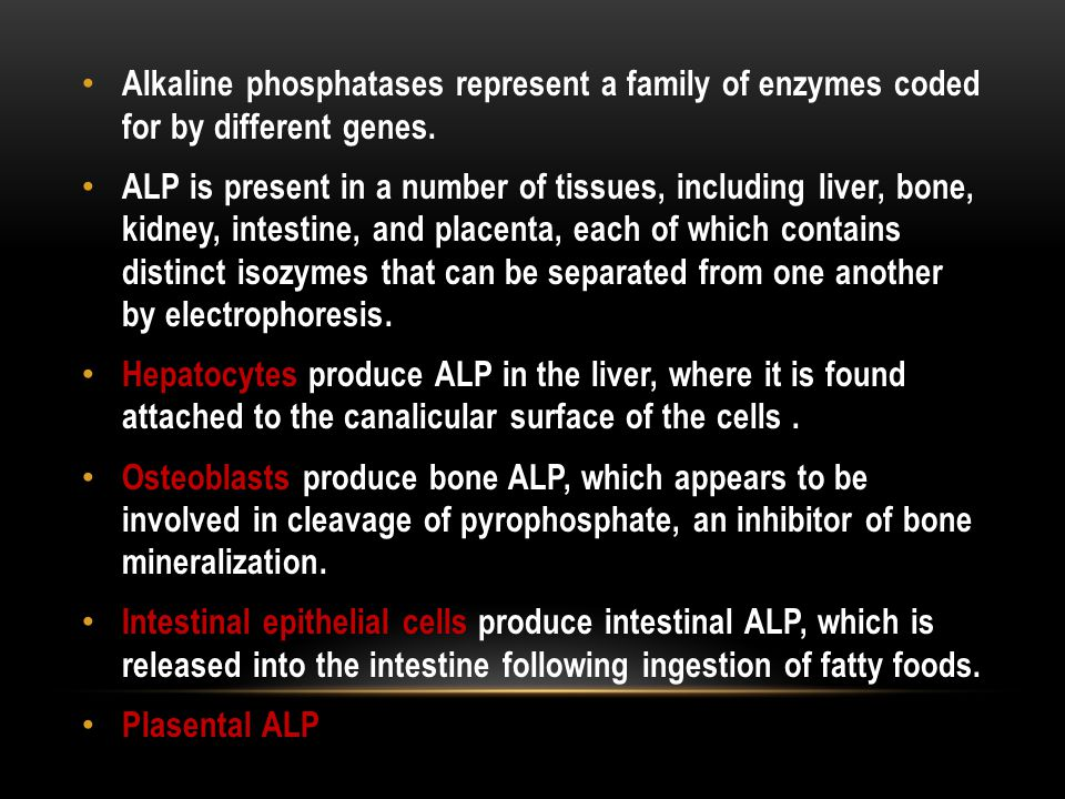 Alkaline phosphatases represent a family of enzymes coded for by different genes.