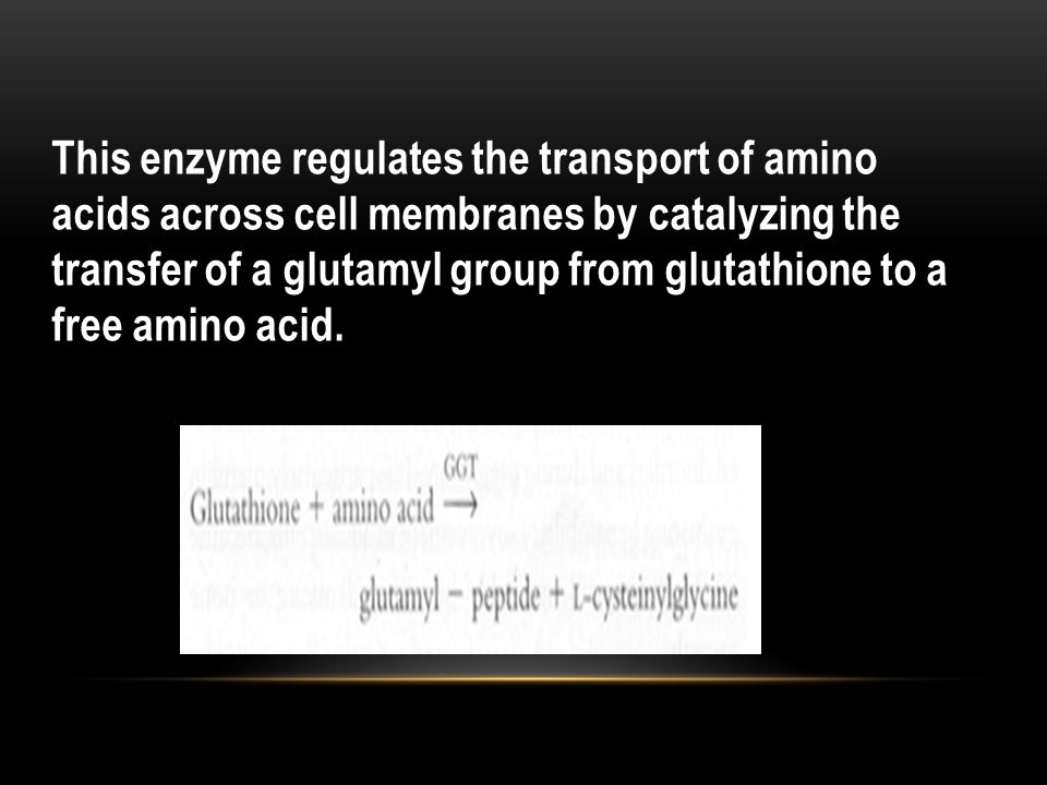 This enzyme regulates the transport of amino acids across cell membranes by catalyzing the transfer of a glutamyl group from glutathione to a free amino acid.