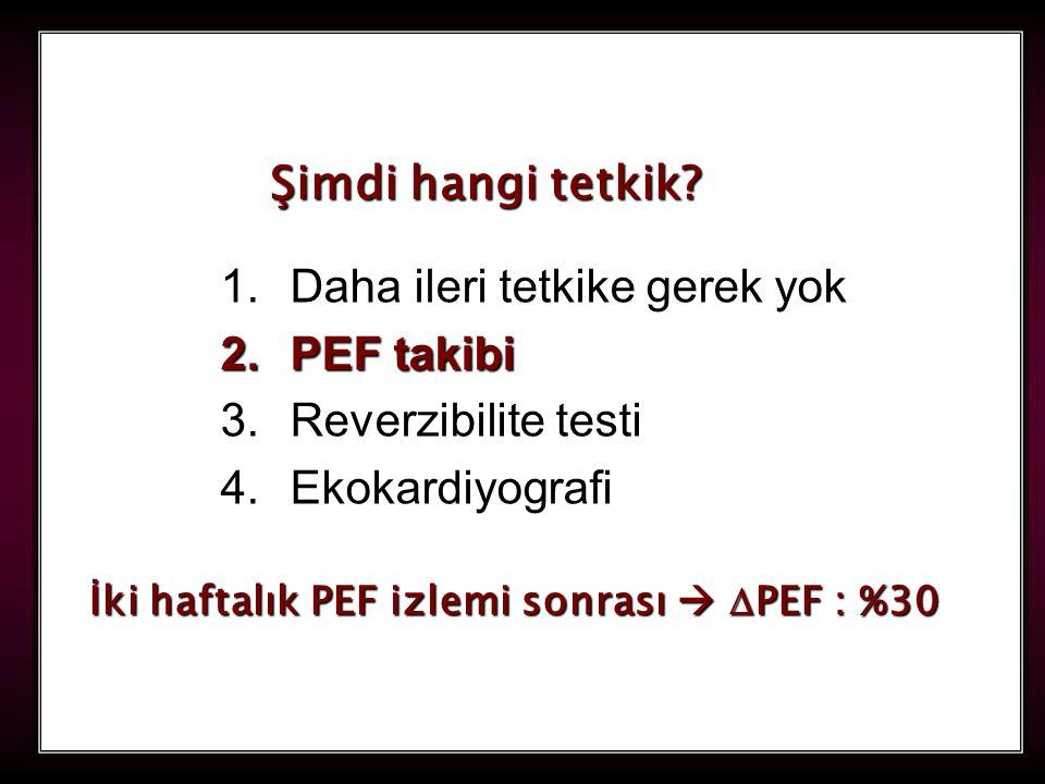 Daha ileri tetkike gerek yok PEF takibi Reverzibilite testi