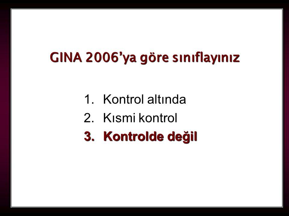 GINA 2006'ya göre sınıflayınız