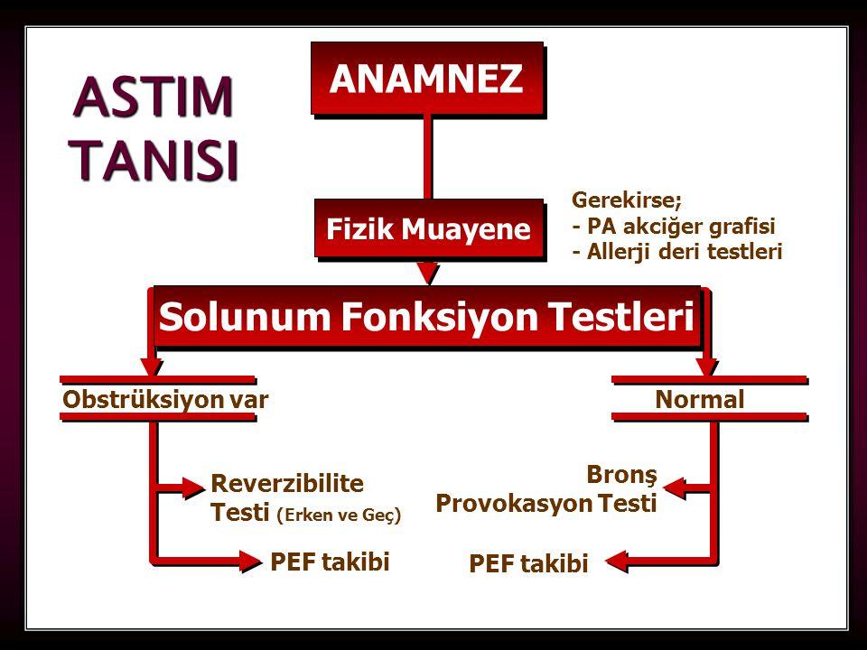 Solunum Fonksiyon Testleri