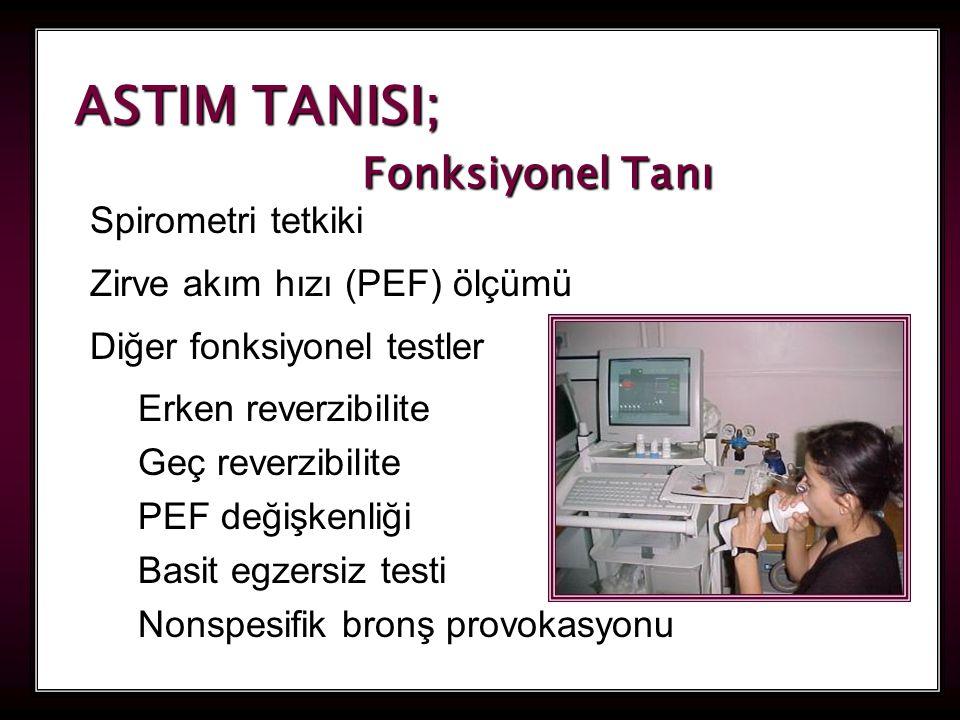 ASTIM TANISI; Fonksiyonel Tanı