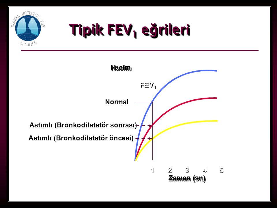Tipik FEV1 eğrileri Hacim FEV1 Normal