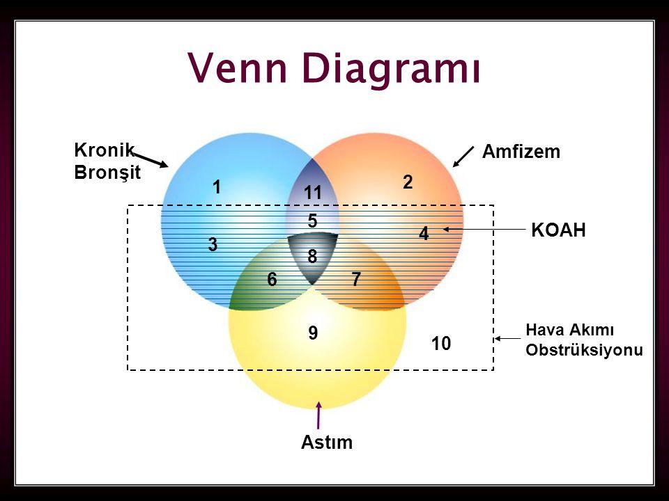 Venn Diagramı Kronik Bronşit Amfizem 2 1 11 5 4 KOAH 3 8 6 7 9 10