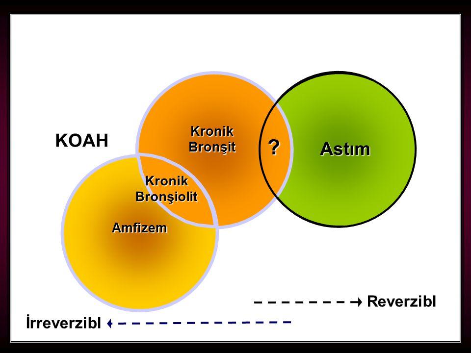 KOAH Astım Reverzibl İrreverzibl Kronik Bronşit Kronik Bronşiolit