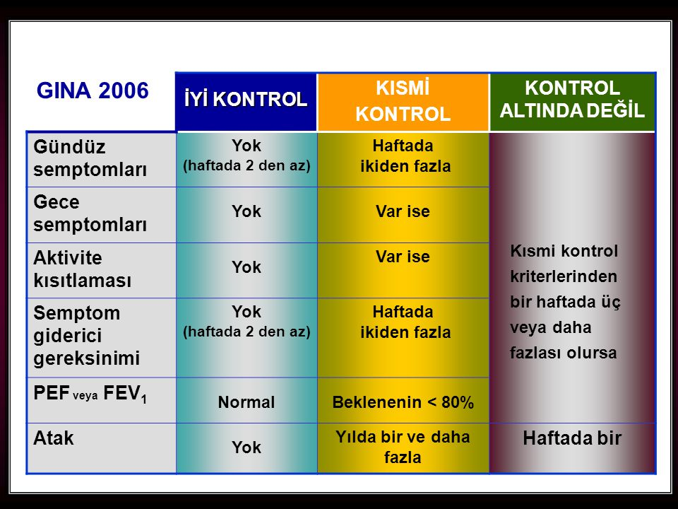 GINA 2006 İYİ KONTROL KISMİ KONTROL KONTROL ALTINDA DEĞİL