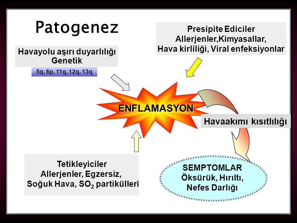 Patogenez ENFLAMASYON Havaakımı kısıtlılığı Presipite Ediciler