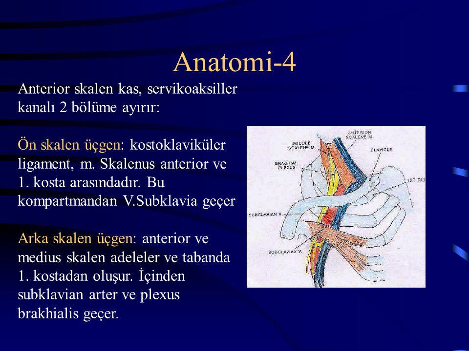 Anatomi-4 Anterior skalen kas, servikoaksiller kanalı 2 bölüme ayırır: