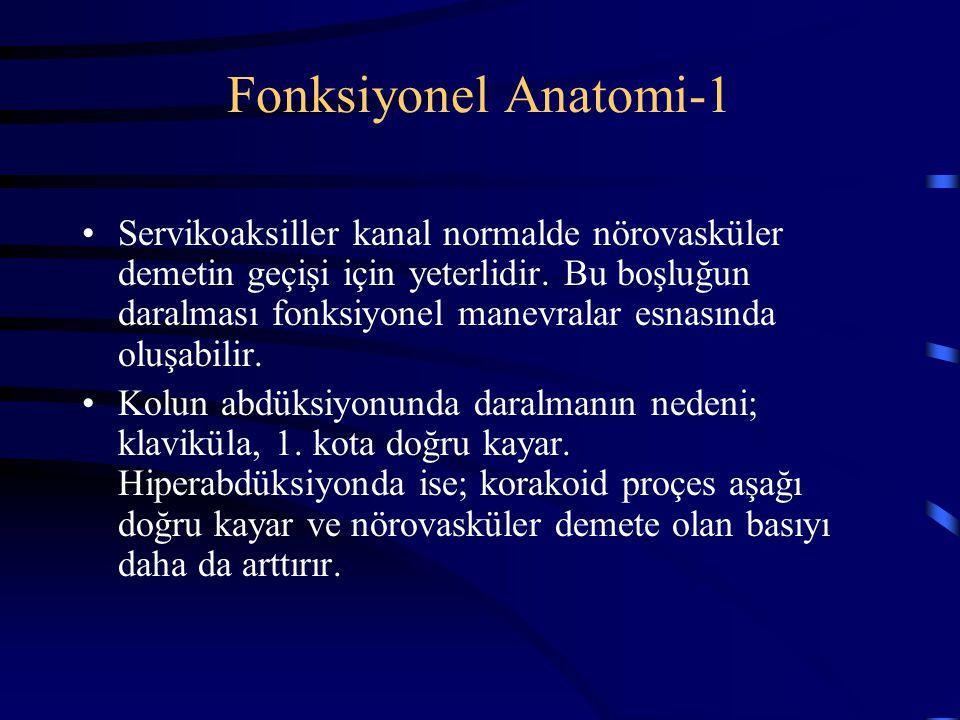 Fonksiyonel Anatomi-1