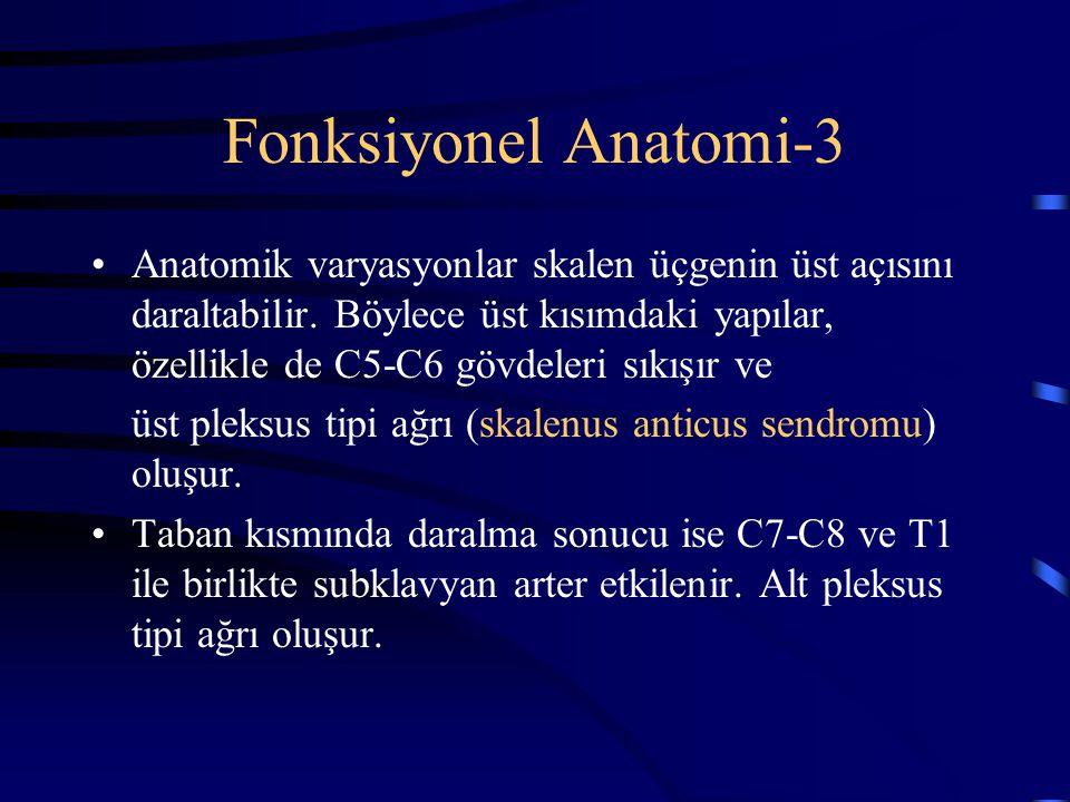 Fonksiyonel Anatomi-3