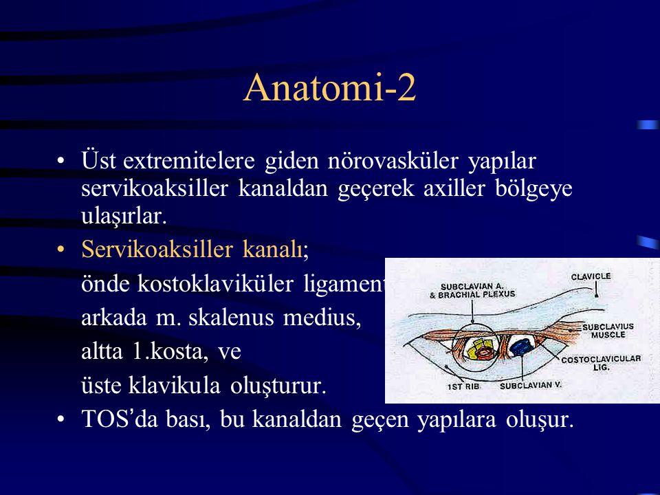 Anatomi-2 Üst extremitelere giden nörovasküler yapılar servikoaksiller kanaldan geçerek axiller bölgeye ulaşırlar.