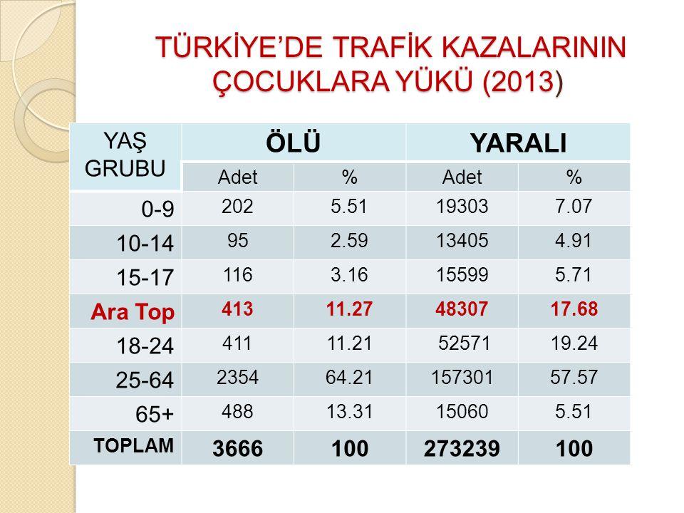TÜRKİYE'DE TRAFİK KAZALARININ ÇOCUKLARA YÜKÜ (2013)