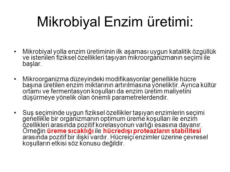 Mikrobiyal Enzim üretimi: