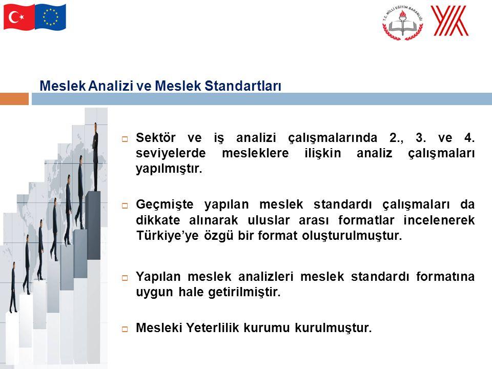 Meslek Analizi ve Meslek Standartları