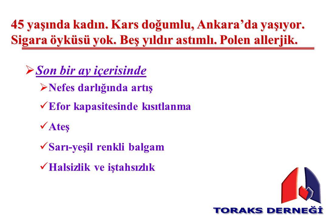 45 yaşında kadın. Kars doğumlu, Ankara'da yaşıyor. Sigara öyküsü yok