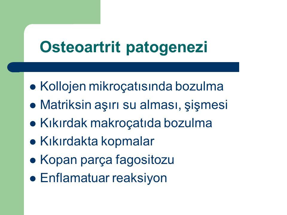 Osteoartrit patogenezi