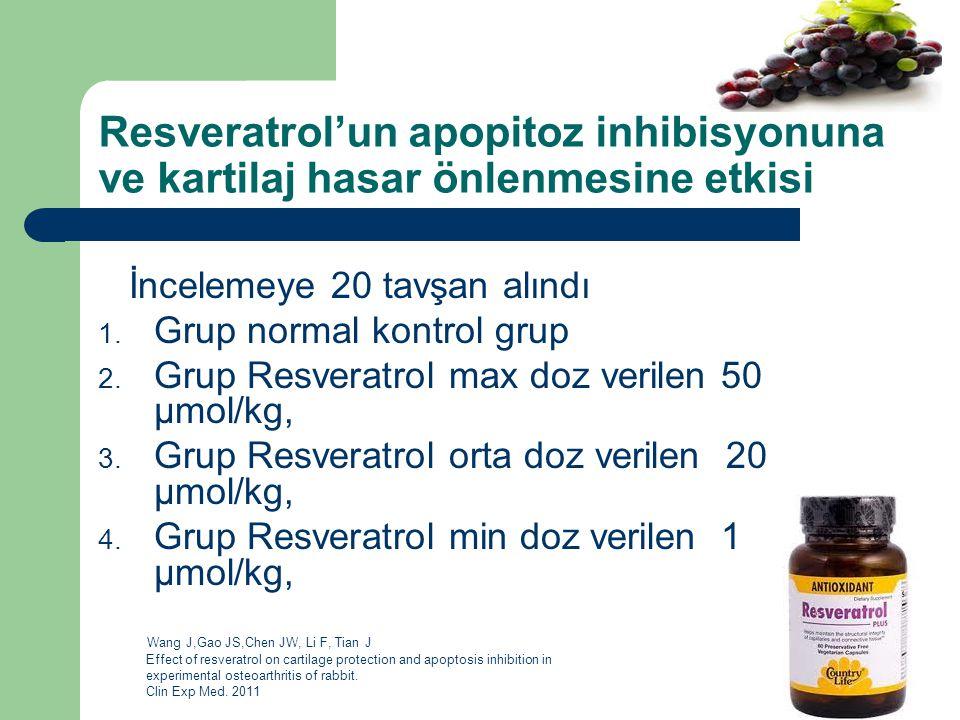 Resveratrol'un apopitoz inhibisyonuna ve kartilaj hasar önlenmesine etkisi